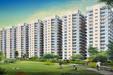 signature-global-the-roselia-Affordable Housng in Gurgaon